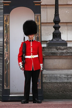 A sentry of the Scots Guards at Buckingham Palace