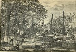 Peeling hemlock bark for the tannery in Prattsville, New York, during the 1840s, when it was the largest in the world