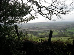 A view of hills and a patchwork of fields seen through a fence and tree.