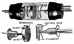 The Marconi-Osram S625, the first commercially produced screen grid tube which came out 1926.  The screen is a cylinder with a metal gauze face that completely surrounds the plate, and the tube is double-ended, with the plate terminal at one end and the grid at the other, to improve isolation between the electrodes.
