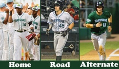 A picture of the different Daytona Tortugas uniforms: Home, Road & Alternate