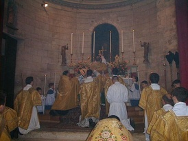 Clergy of various ranks in vestments at a Mass according to the Neo-Gallican Rite of Versailles Elevation of the chalice.