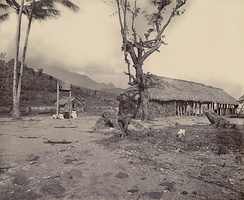 The pa or the military camp of Teraupo'o, 1897