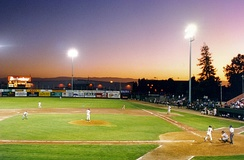 A San Jose Giants game in 1994