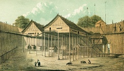 A Dayak Longhouse, known as Rumah Betang in Indonesia or Rumah Panjang in Malaysia, the traditional dwelling of many Dayak Tribes. Original watercolour painting by Carl Schwaner, 1853.