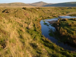A meander on an uppermost reach of River Taw