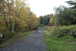 The Nashwaak River Trail in Fredericton North.