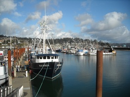 Harbor in Yaquina Bay, Newport, Oregon