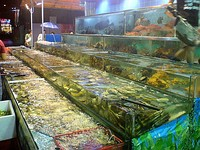 Due to Guangdong's location on the southern coast of China, fresh live seafood is a specialty in Cantonese cuisine.