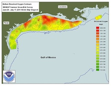 Dead zone in the Gulf of Mexico