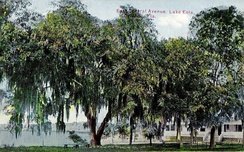 Lake Eola in 1911