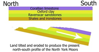 A cross section of the geology of the North York Moors.
