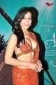 Sofia Hayat in a modern bra shaped choli and a chiffon saree of matching colour and embroidery