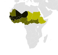 A distribution map of Fula people. Dark green: a major ethnic group; Medium: significant; Light: minor.[23][36]