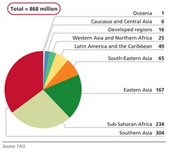 Number of people affected by undernourishment in 2010–12 (by region, in millions)[28]