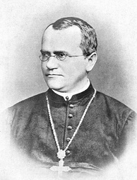 Gregor Mendel, Augustinian Friar and scientist, who developed theories on genetics for the first time.