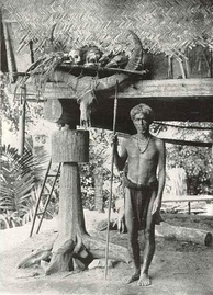 An Ifugao warrior with some of his trophies, Cordillera Mountains, circa 1912