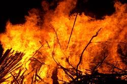 An outdoor wood fire