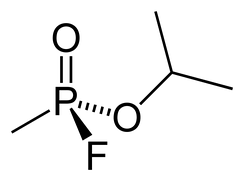 The chemical structure of sarin nerve gas, developed in Germany in 1939