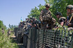 U.S. Paratroopers and Ukrainian National Guard during the Fearless Guardian exercise near Yavoriv, Ukraine, 6 June 2015