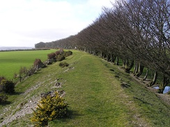 Disbanded West Somerset Mineral Railway embankment near Gupworthy, UK
