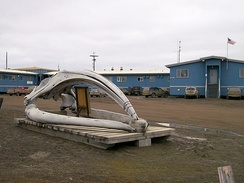 Bowhead whale skull in front of Iḷisaġvik College main building