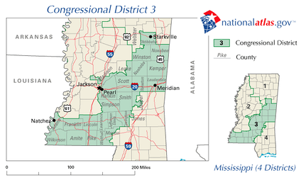 Mississippi's 3rd congressional district in 2010