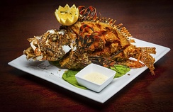 A dish that features whole fried invasive lionfish at Fish Fish of Miami, Florida