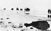 Refugees cross the frozen Vistula Lagoon, 1945