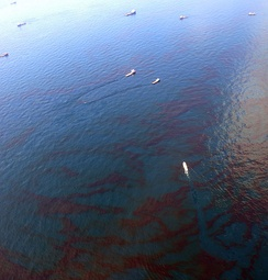 Oil skimming vessels (distance) in the Gulf of Mexico