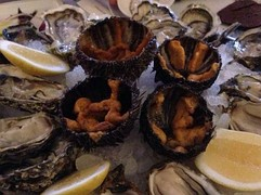 Sea urchins served amid oysters.JPG