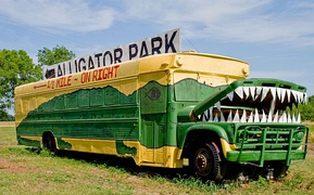 "The ""Gator Bus"", a 1960s Wayne/Chevrolet school bus repurposed as a sign for an alligator park in Louisiana"