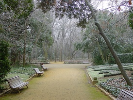Winter in the city gardens of Campo Grande.