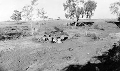 A group of Aboriginal women and children sitting in gully at Wave Hill in 1924