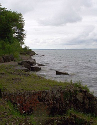 Alvar habitat on Kelleys Island. South Bass Island visible in distance.