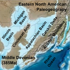 Paleogeographic reconstruction showing the Appalachian Basin area during the Middle Devonian period[17]