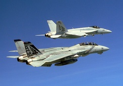 "VFA-143 ""Pukin Dogs"" F-14B and F/A-18E in 2005"