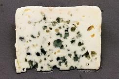Ломтик рокфора с грибком Penicillium roqueforti