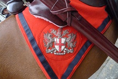 City of London arms on a saddle blanket, as seen outside the Royal Courts of Justice during the Lord Mayor's Show, 2011.