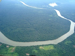 Aerial view of part of the Amazon rainforest.