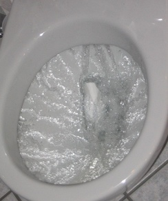 A flush toilet bowl during the flushing action