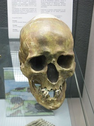 The Chancalade skull