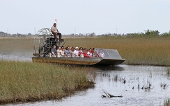 Airboating has become a popular ecotourism attraction in the Everglades