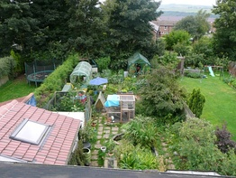 Suburban permaculture garden in Sheffield, UK with different layers of vegetation