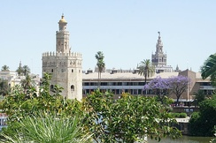 The Almohads transferred the capital of Al-Andalus to Seville.