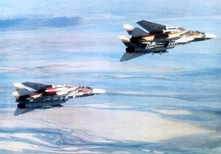 Two Iranian Tomcats equipped with multiple missiles, circa 1986, in the midst of a project to adapt I-Hawk surface-to-air missiles for F-14s[53]