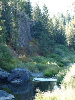 Exposed Basalt along the creek in Spokane.