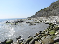 Seven Rock Point, on the Axmouth to Lyme Regis Undercliffs SSSI