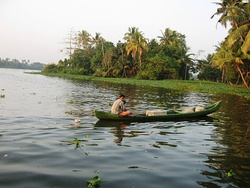 Backwaters in Alappuzha