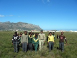 Community conservation group for the critically endangered remnant of Lourensford Alluvium Fynbos at Harmony Flats, Cape Town.
